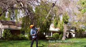 Best Longest Gas Pole Saw Reviews [Right Buying Guide]