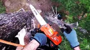 Best Echo Chainsaw Review for 2020: A Great Handy Tool