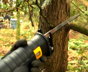 Tree Pruning with Reciprocating Saw