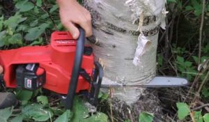 Milwaukee Chainsaw Review [Special for M18 Fuel Chainsaw]