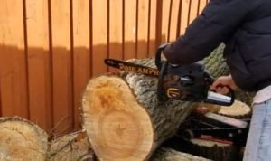 Best Poulan Pro Chainsaw Review [Gas Powered]